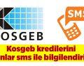 Kosgeb kredilerini alanlar sms ile bilgilendirildi