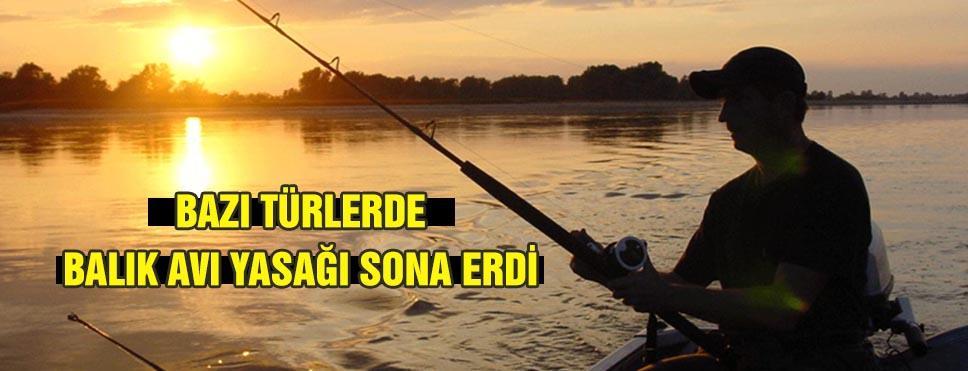 Bazı türlerdeki balık avı yasağı sona erdi
