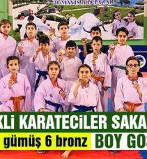 Bilecikli Karateciler Sakarya'da Boy Gösterdi