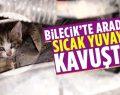 Bilecik'te otomobilin motor bölümüne giren yavru kedi kurtarıldı