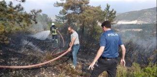 bilecik kent ormanında yangın