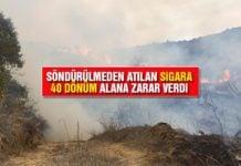 Yeniköy'ün Sarıyer Mevkisinde Yangın-5