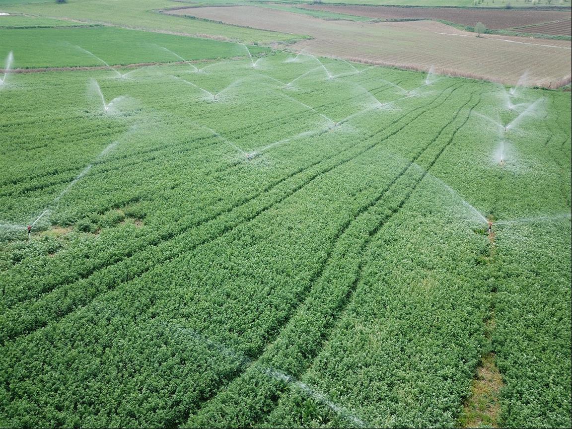 Bilecik'te 2020 Yılında 11 Bin 700 Dekar Tarım Arazisi Sulandı