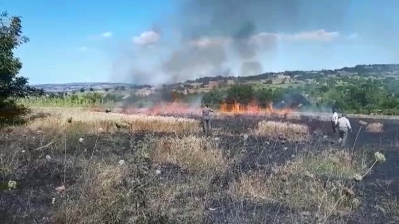 Vatandaşların Dikkati Yangının Ormana Sıçramasını Önledi1